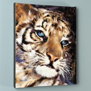 Cub LIMITED EDITION Giclee on Canvas by Stephen Fishwick