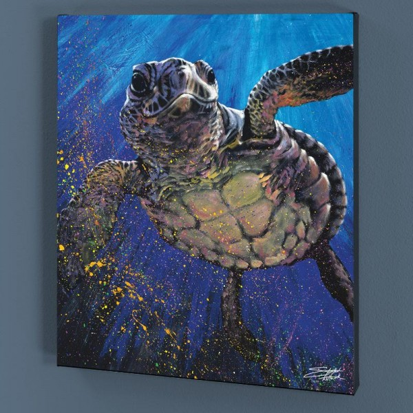 Kemp's Ridley LIMITED EDITION Giclee on Canvas by Stephen Fishwick