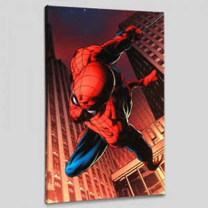 Amazing Spider-Man #641 LIMITED EDITION Giclee on Canvas by Joe Quesada and Marvel Comics