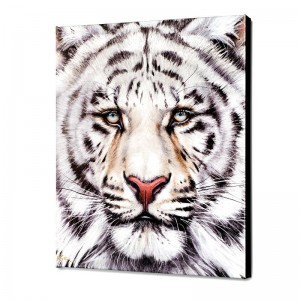 Bengal Limited Edition Giclee on Canvas by Martin Katon
