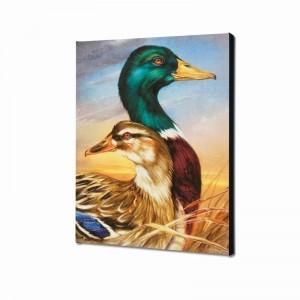 Mallard Limited Edition Giclee on Canvas by Martin Katon