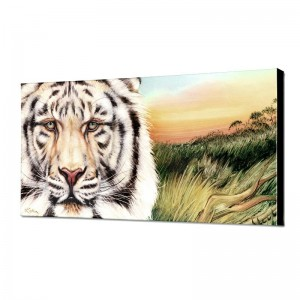 White Bengal Limited Edition Giclee on Canvas by Martin Katon