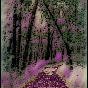 purple_path