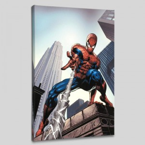 Amazing Spider-Man #520 LIMITED EDITION Giclee on Canvas by Mike Deodato Jr. and Marvel Comics