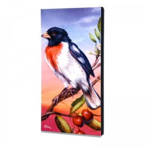 Rose Breasted Grosbeak Limited Edition Giclee on Canvas by Martin Katon