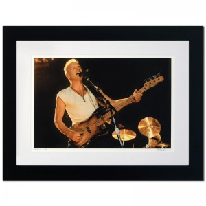 Sting Limited Edition Giclee by Rob Shanahan